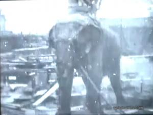 Thomas Edison: Electrocuting an Elephant - 1903