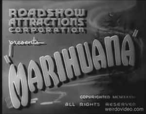 Watch the feature film Marihuana!