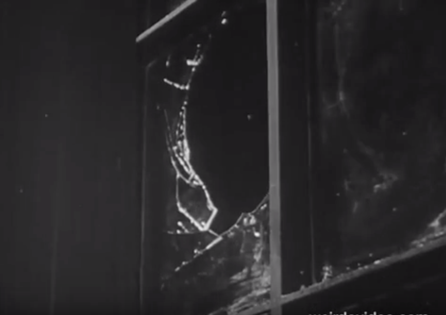 Why Vandalism? - 1955